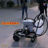 天津武清区喷淋式洒布机乳化沥青撒布机优惠