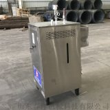生物質顆粒蒸汽發生器 廠家直銷品質保證