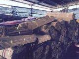 竹签, 竹签厂家, 加工竹签    烧烤签