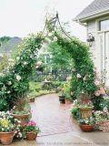 玫瑰花拱门绿植门头拱门制作仿真绿植门头婚庆拱门