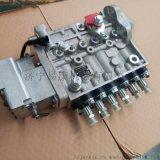 发电机组康明斯6C8.3发动机柴油泵
