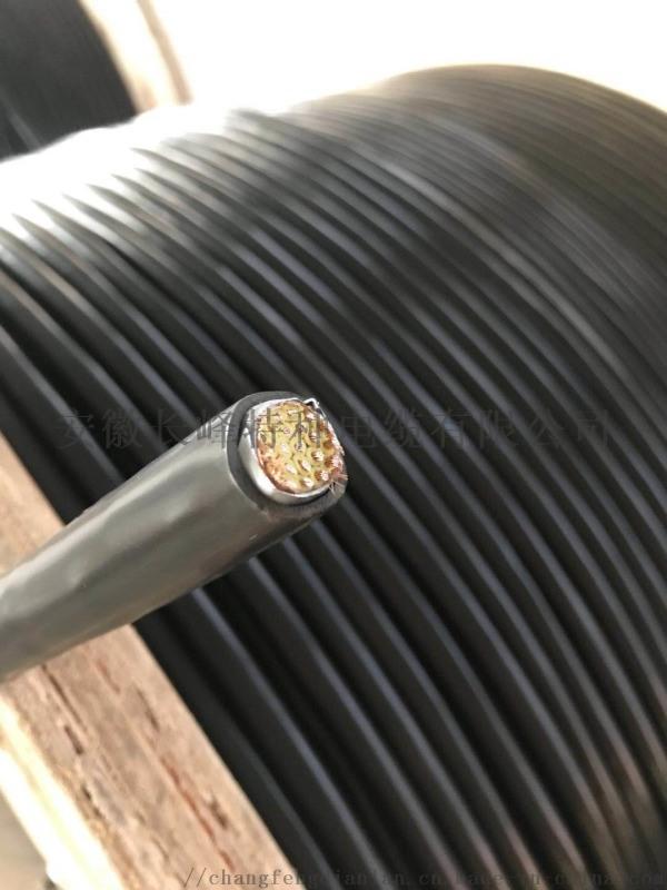 阻燃控制电缆铜丝**ZR-KVVP10*1.5