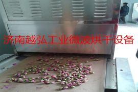 玫瑰花微波烘干杀青厂家在那 鲜花干燥设备选济南越弘微波