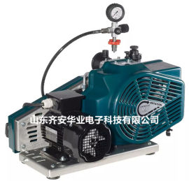 德国爱安达LW100-E-ECO空气压缩机、充气泵
