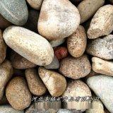 本格供應污水處理用鵝卵石 鋪路用鵝卵石拋光鵝卵石