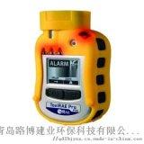 ToxiRAE Pro PID 個人有機氣  測儀