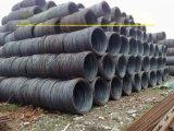 Q195L低碳钢线材 6.5 拉丝线材