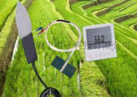 高精度量程宽智能叶面温度记录仪