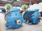 YZR250M1-8/30kw绕线转子电动机 佳木斯电动机 密封性好电动机 起重电动机 行车电机
