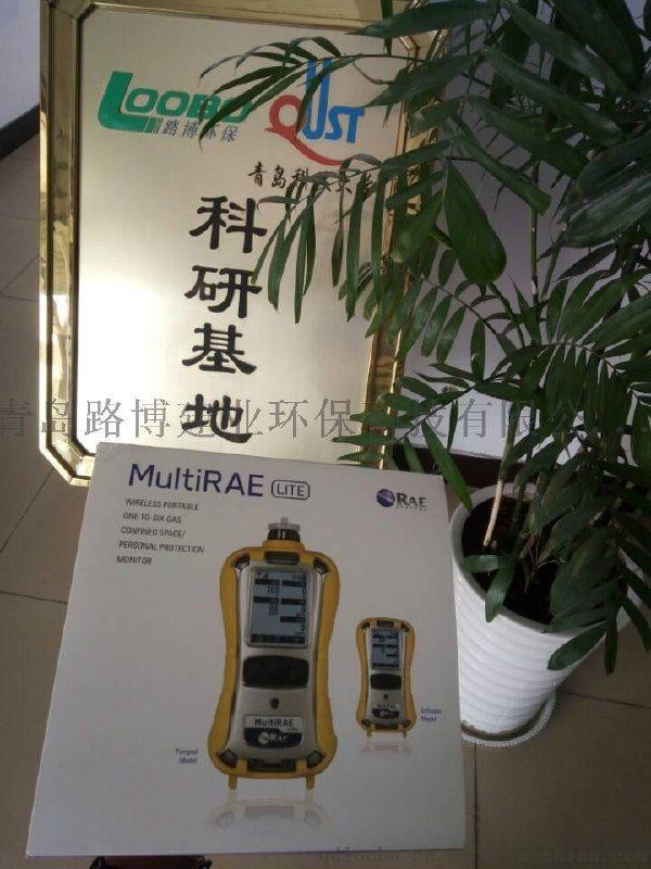 六合一有害气体/射线检测仪美国华瑞PGM-62X8