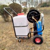 直供手推式电动喷雾器可充电农用打药机大棚用喷药机