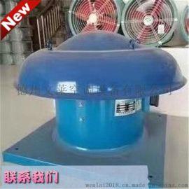 现货供应DWT玻璃钢屋顶风机型号全