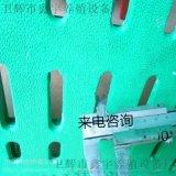 漏糞板母豬漏糞板豬用產牀保育牀塑料小豬養豬設備