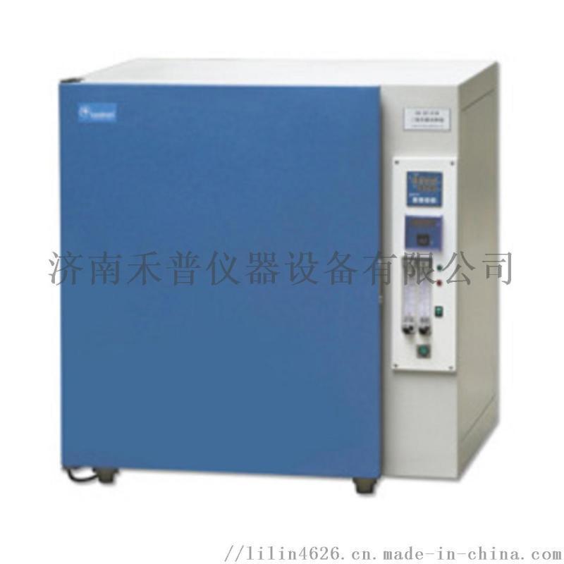 二氧化碳培养箱HH.CP-TW