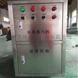 小型電蒸汽鍋爐 電蒸汽發生器