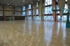 体育运动实木地板,运动木地板,实木运动地板