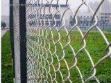 綠色鐵絲防護網@戴南綠色圍欄網@綠色鐵絲防護網廠家