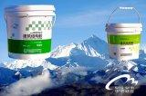 環氧防水與粘結雙功能界面劑,雙功能界面劑