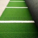 塑料草坪人工假草坪人造模擬草皮幼兒園草坪