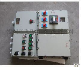 BXM51防爆照明箱 防爆配电箱 防爆动力箱