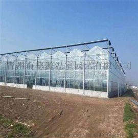 连栋玻璃智能温室大棚建设  德源温室