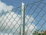 山体绿化防护网 护坡勾花网 高强度钢丝格栅网