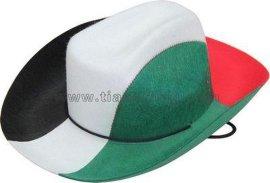 帽子TD-M1