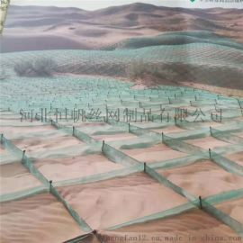 防沙治沙阻沙网,西藏公路阻沙网,尼龙网阻沙障