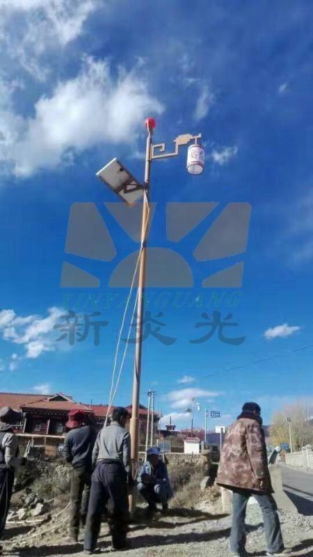 四川藏式民族风格太阳能路灯
