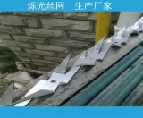防爬大刺钉厂 质量可靠 规格齐送货及时