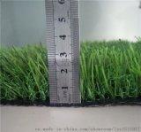 向全国专门提供人造草坪