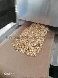 环保型五谷杂粮烘焙设备 济南微波设备厂家