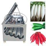 小型洗萝卜机 电动白萝卜青萝卜胡萝卜毛辊清洗机