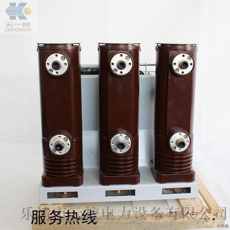 VS1(ZN63)-12户内高压真空断路器 户内高压真空断路器厂家