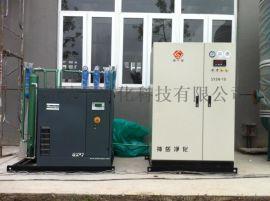食品专用制氮机 包装充氮找神岳净化