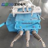 廣西電力FZW28-12智慧分界真空斷路器