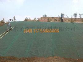 钦州三维植被网坚固的绿色保护层