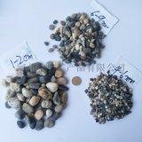 供應天然河灘石 濾料墊層鵝卵石 水處理天然卵石