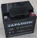 襄樊市东洋蓄电池6-GFM-38机房设备专用电池