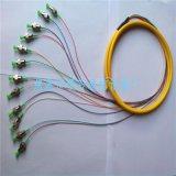 供應FC/APC12芯束狀尾纖 光纖尾纖