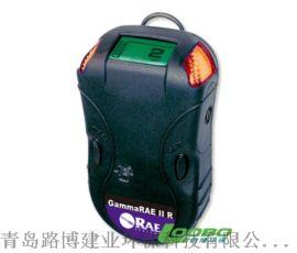 美国华瑞RR便携式射线检测报警仪