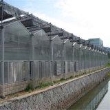 上海市陽光板溫室施工 陽光板大棚設計