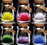 流行玩具送礼神器会发光的许愿精灵,种下属于你自己的水晶