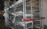 银星YX-wlj 自动喂料机 鸡场上料机 银星畜牧设备 周口养鸡设备厂家