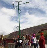 太阳能路灯TY-A01