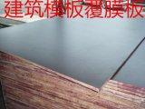 清水模板9层芯建筑模板防水胶杨桉芯酚醛胶面
