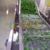 山東DR工廠用醬菜清洗加工設備 黃瓜多功能清洗機