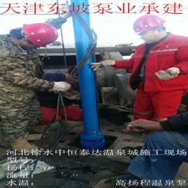 高扬程井用潜水泵-QJ系列井用潜水电泵