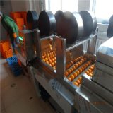 橙子專用清洗機 橙子氣泡清洗機 臍橙鼓泡去雜清洗機