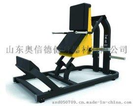 奥信德AXD-745坐式提膝训练器健身房商用大黄蜂系列练习器厂家直销